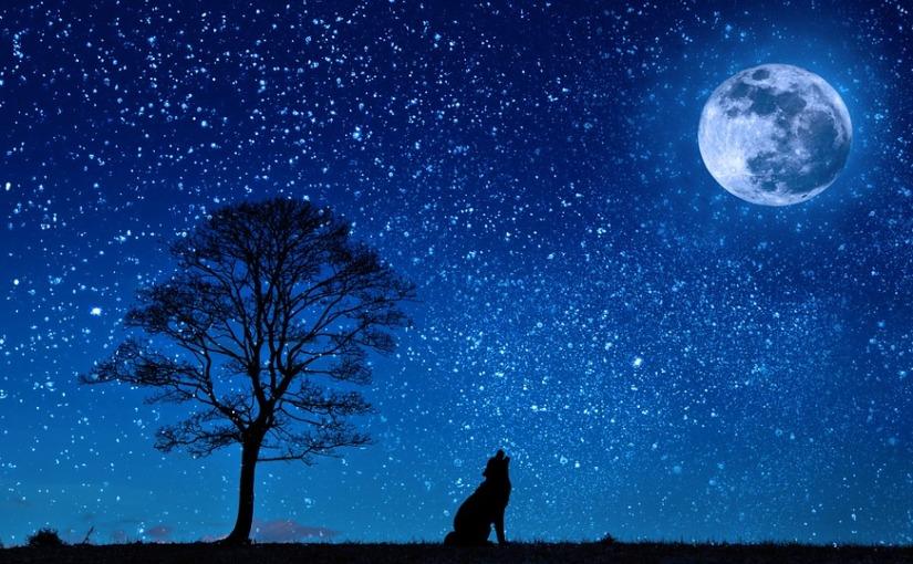 La Lune en quelqueslignes…