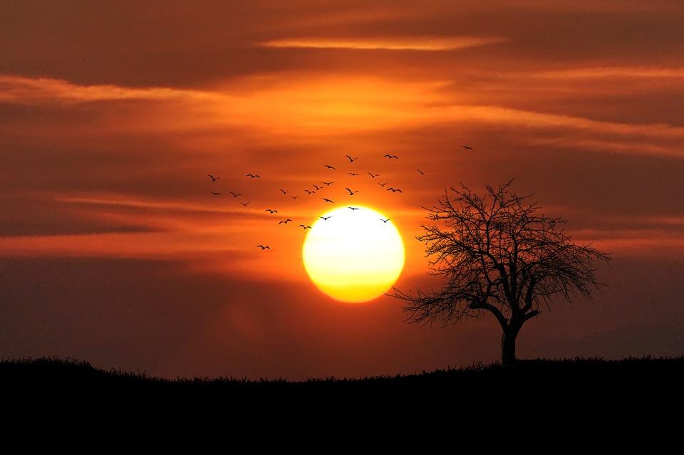 sunset-742744_960_720