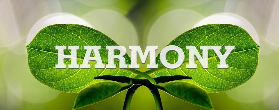 harmony-1210463_960_720