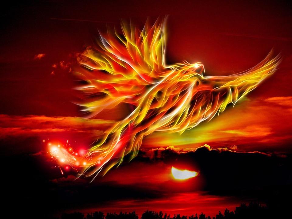 phoenix-500469_960_720 (nouvelle lune)